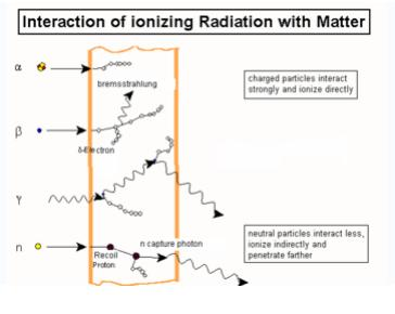 Radiation Physics and Biology